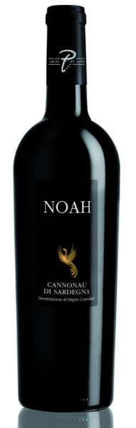 Noah Cannonau DOC